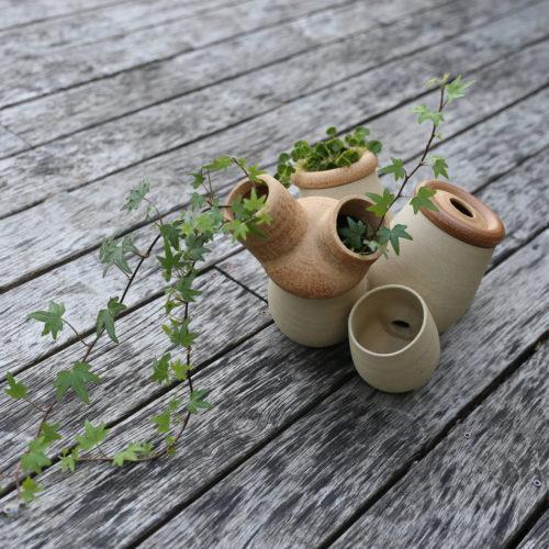 végétalisable 02